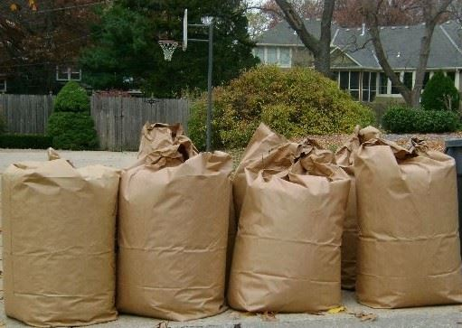 Yard waste bags sit on the curb ready for pick-up.