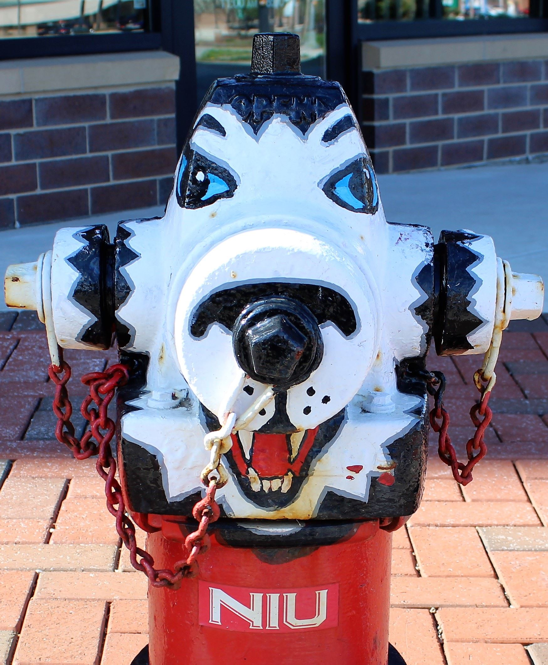 An NIU Huskie is painted on a downtown fire hydrant